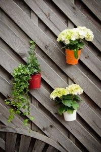 stockvault-flower-pots-132195