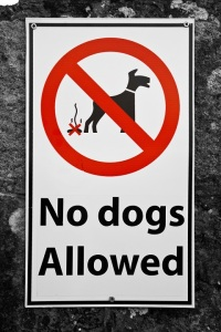 stockvault-no-dogs-allowed-sign133743