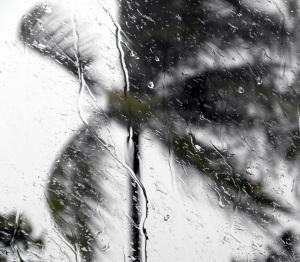stockvault-tropical-storm-window-raindrops150905