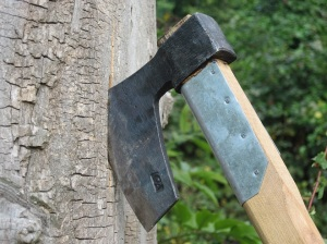 stockvault-axe-on-a-tree139006