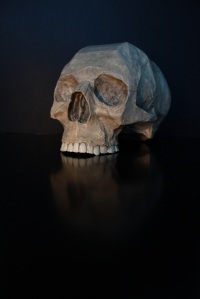 stockvault-skull165502