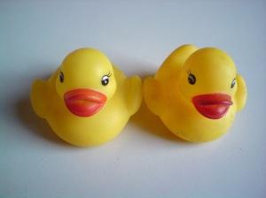 stockvault-rubber-ducks116998