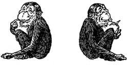 monkeys-05