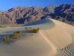 stockvault-desert-landscape123669