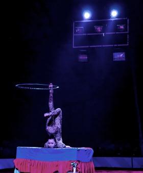 stockvault-circus-acrobat148705