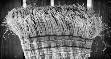 stockvault-broom195040