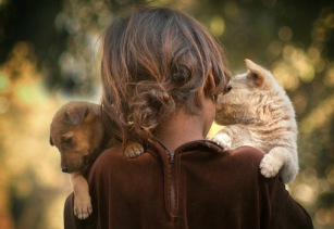 stockvault-little-girl-and-puppies104425