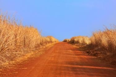 stockvault-safari-trail133560