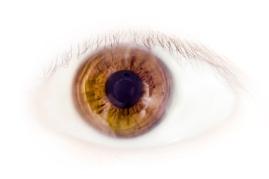 stockvault-eye-126105