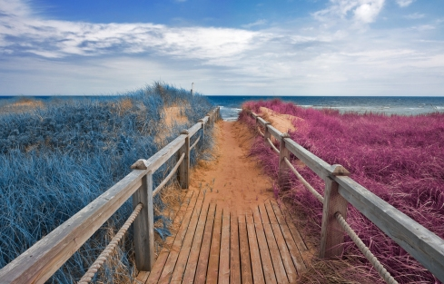 stockvault-split-tone-beach-boardwalk---blue-amp-pink151502