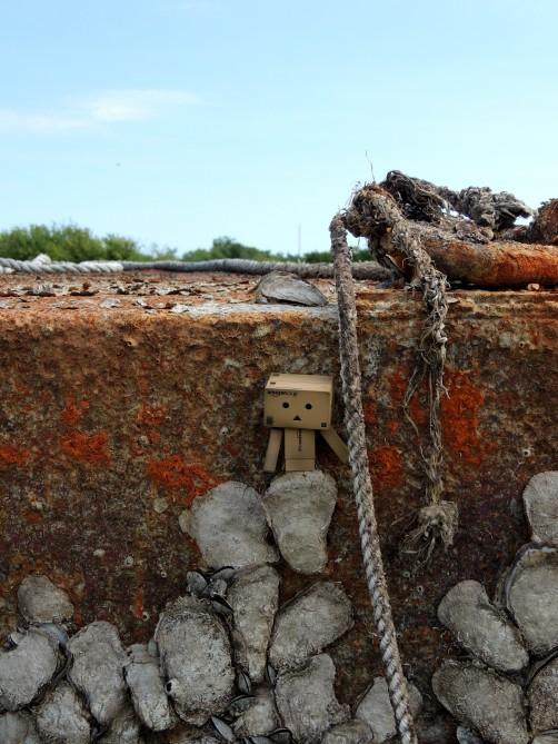 stockvault-amazon-robot-at-sea141153