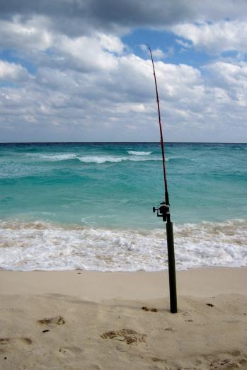 stockvault-fishing-pole135355