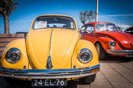 Volkswagen Beetle cars