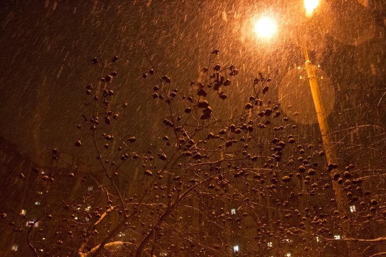 stockvault-snowfall-139338