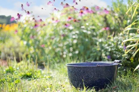 stockvault-pottery-in-the-garden217698
