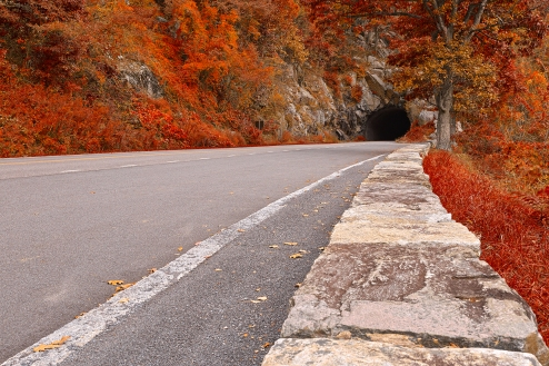stockvault-skyline-tunnel-drive---ruby-autumn-hdr196842