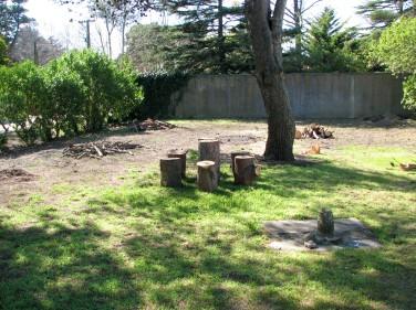 stockvault-backyard125021